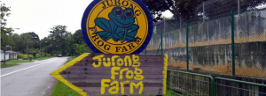 JurongFrogFarmKranji